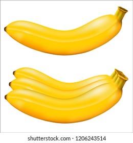 Banana isolated. Vector illustration Eps 10.vector high detail. Detailed realistic ripe fresh banana.