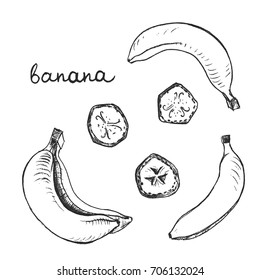Banana/ Set of isolated sketchy style fruits and berries/ Doodle pencil drawn fruits in black and white/ Hand drawn vector illustration