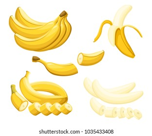Banana and slices of bananas. Vector illustration of bananas. Vector illustration for decorative poster, emblem natural product, farmers market. Website page and mobile app design
