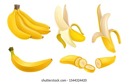 Banana Vector Set With Half Peeled Bananas and Cut Slices