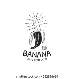 Banana vector template logo. Fruit ink sketch.