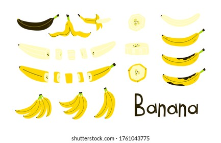Banana whole, peeled, cut. Banana peel. Rotten brown banana. Banana slices. Bunch of bananas. Set of modern vector objects isolated on white background. Positive flat design. Cartoon style. Clip art