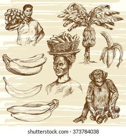 Bananas set, hand drawn illustration