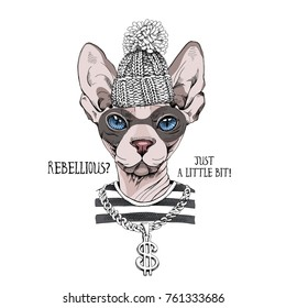 Bandit sphynx cat in a striped t-shirt, knitted cap with pom pom, with a pendant dollar. Vector illustration.