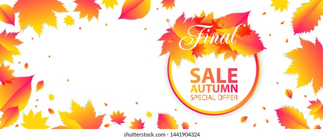 Banner Autumn Background Orange Sale Final. Leaves Vector template