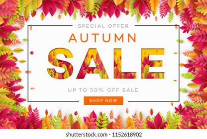 Banner for autumn sale in frame from leaves. Vector illustration EPS10