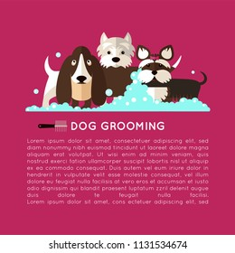 Banner with grooming dogs ( basset hound, yorkshire terrier, West Highland White Terrier)  with the inscription. Vector modern poster in flat style on a purple background.