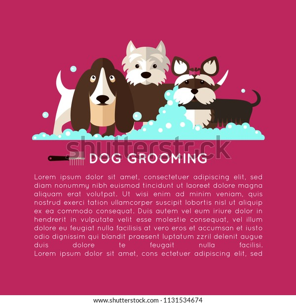 Banner Grooming Dogs Basset Hound Yorkshire Stock Vector Royalty Free 1131534674