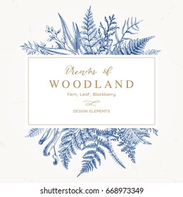 Banner with herbs, leaves and ferns. Frame with a leafy bouquet.  Floral design elements. Vector illustration. Blue
