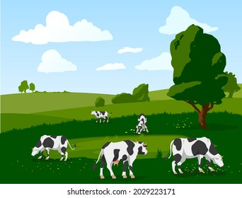 Banner with herd of spotted cows grazing on green meadow. Holstein frisian breed domestic cattle for milk, dairy products and meat on agricultural farm. Vector flat illustration.