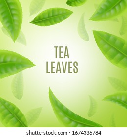 Banner or poster background with shiny half transparent green tea leaves realistic vector illustration. Natural healthy organic drink advertisement template.