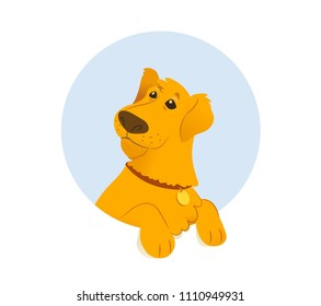 Banner with retriever dog. Vector flat illustration