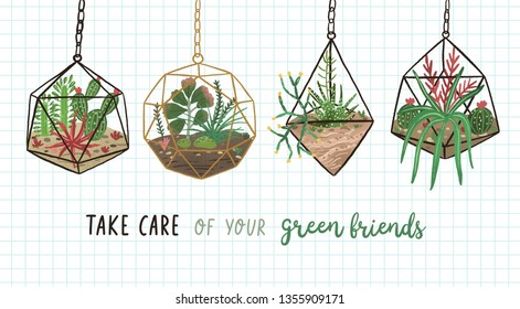Banner with succulents, cactuses and other plants growing in hanging glass vivariums or florariums and Take Care Of Your Green friends. Home decor in modern Scandic style. Flat vector illustration.