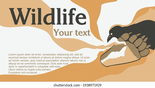 Banner for tourist advertising of travel to the regions of Kamchatka or Alaska. Evenki myths and legends. The image shows a Raven, a bear trail and a smoking hill or volcano. Vector.