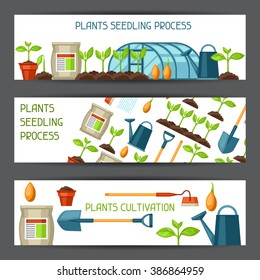 Banners for cultivation, plants seedling process, stage plant growth, fertilizers and greenhouse.