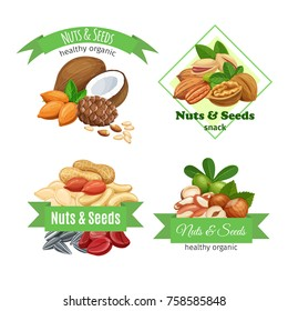 Banners or labels with nuts and seeds. Cola nut, pumpkin seed, peanut and sunflower seeds. Pistachio, cashew, coconut, hazelnut and macadamia. Vector illustration.