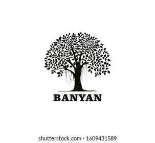 Banyan tree logo design template. tree silhouette vector isolated on white background.