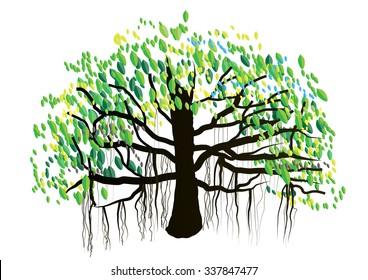 Banyan tree on white background,vector illustration