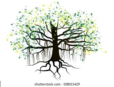 Banyan tree on white background,vector illustration