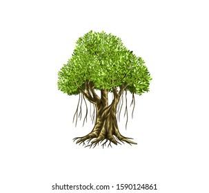 Banyan tree vector illustration. roots of banyan tree.