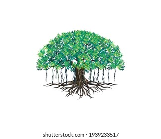 Banyan tree vector illustrations isolated on white.