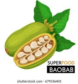 Baobab vector icon. Healthy detox natural product superfood illustration for design market menu superfood .