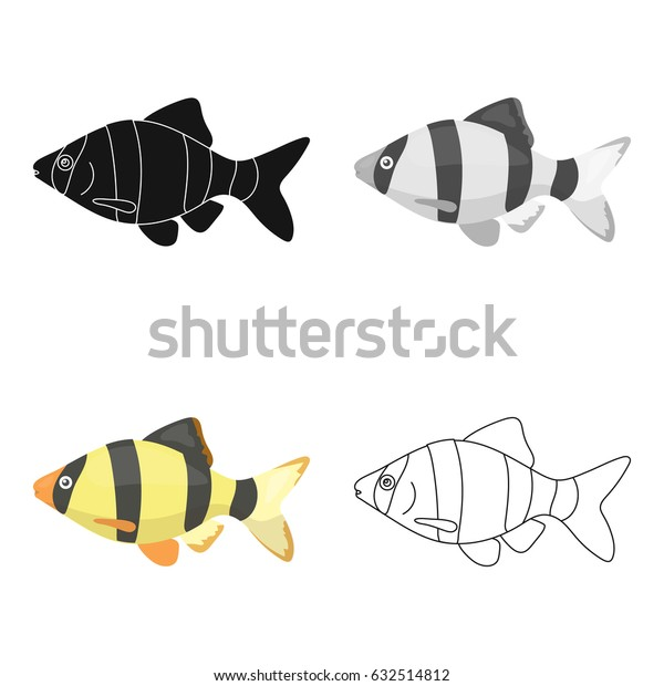 Barbus fish icon cartoon. Singe aquarium fish icon from the sea,ocean life cartoon.