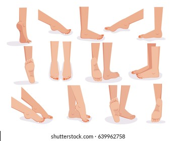 Bare female leg And foot diversified view.Back, front, Side view.  Vector illustration.Isolated on white background