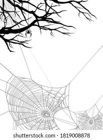 nackte Baumzweige und Spinnennetz - schwarz-weißer Hintergrund