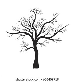1000 Bare Tree Silhouette Pictures Royalty Free Images Stock