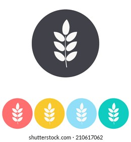 barley icon , vector illustration