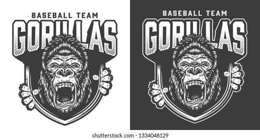 Baseball team angry gorilla mascot emblem with ferocious primate head and claws in vintage monochrome style isolated vector illustration