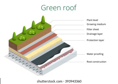 Basic elements of a green roof.  Flat 3d vector isometric illustration of eco roof.