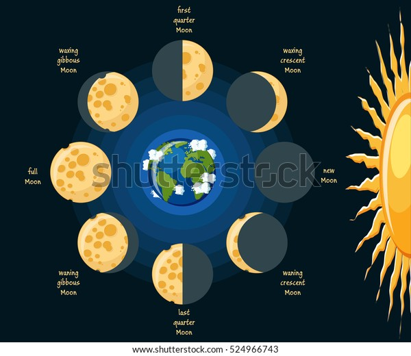 basic moon phases diagram  cheese moon in its different phases depending on  position relative to