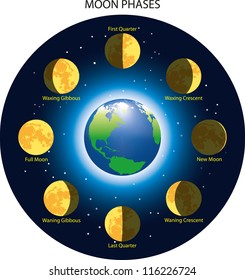 Basic phases of the moon.