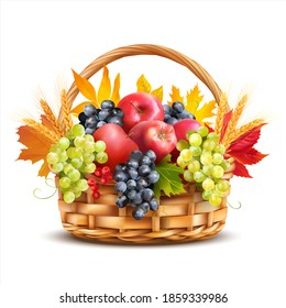 Basket with apples, grapes and wheat ears decorated with autumn leaves. Isolated on white. Vector illustration.
