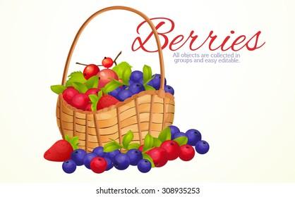 Basket berries, harvest berries, bunch, berry