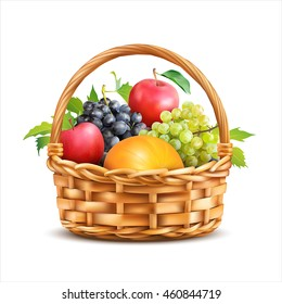 Basket with fruits isolated on white. Vector illustration.