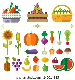 Basket with fruits and vegetables. Farm. Elements and sprites. Carrot, pumpkin, onion, tomato, pepper, pineapple, cherry, banana, grapes, apple, pear. Vector flat  illustrations