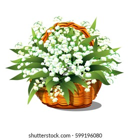Basket with lilies of the valley isolated on white background. Vector close-up cartoon illustration.