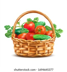 Basket with tomatoes, cucumbers and fresh herbs isolated on white. Vector illustration.