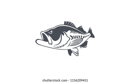 bass fish image