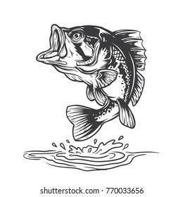 Bass fish jumping mid air.