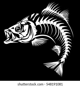 Bass fish skeleton isolated on white vector illustration