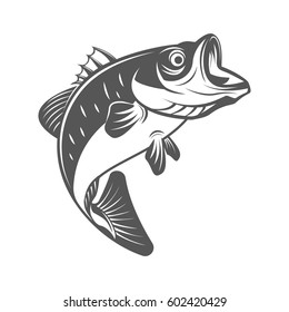 Bass fish vector illustration in monochrome vintage style. Design element for logo, label, emblem.