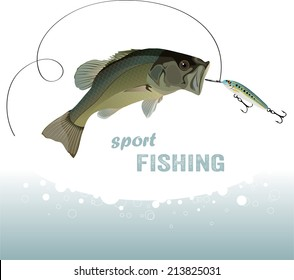 bass fishing, bass catches the bait, vector illustration