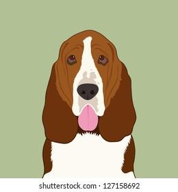 Basset hound, The buddy dog