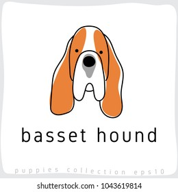 Basset Hound : Dog Breed Collection : Vector Illustration