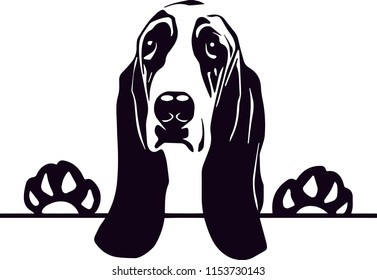 Basset Hound Dog Breed Love Peeking Pet Puppy Mom Design Element Ribbon Isolated Head Face