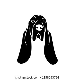 Basset hound dog - isolated vector illustration
